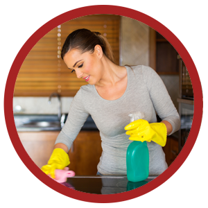 home flea treatments cleaning
