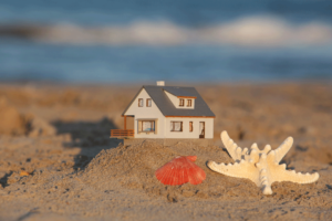 Horseflies-at-the-Beach-Accurate