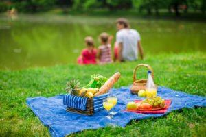 picnic foods, pests